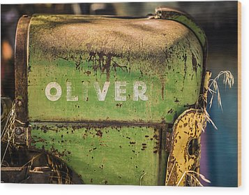 Oliver Wood Print by Steve Smith
