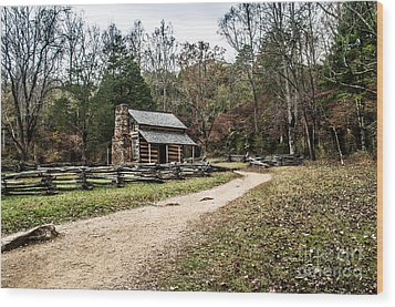 Wood Print featuring the photograph Oliver's Log Cabin by Debbie Green