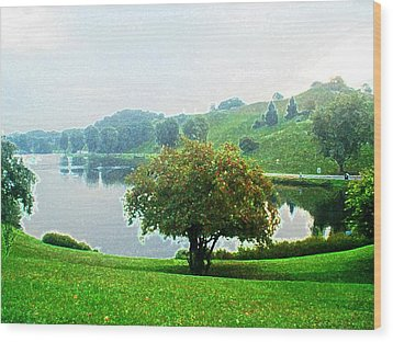 Olympiapark In Munich Wood Print by Zinvolle Art