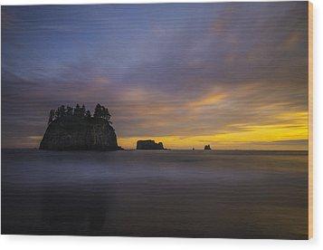 Olympic Coast Sunset Wood Print by Larry Marshall