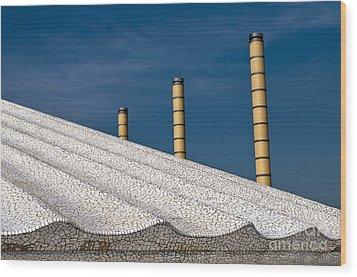 Olympic Columns Wood Print