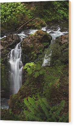 Olympic National Park Wood Print by Larry Marshall