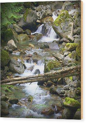 Olympic Range Stream Wood Print by Marty Koch