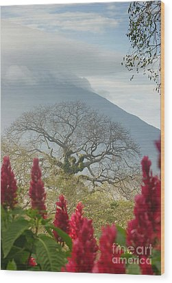 Wood Print featuring the photograph Ometepe Island 1 by Rudi Prott
