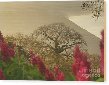 Wood Print featuring the photograph Ometepe Island 2 by Rudi Prott