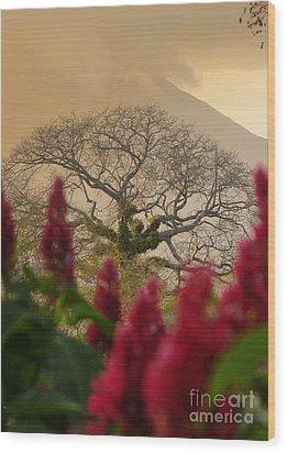 Ometepe Island Nicaragua 4 Wood Print
