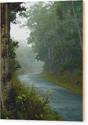 On A Country Road Wood Print by Lehua Pekelo-Stearns