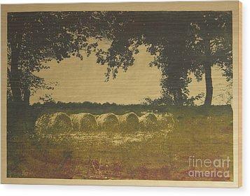 On A Farm In France Wood Print by Deborah Talbot - Kostisin