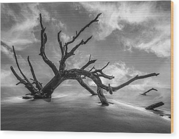 On A Misty Morning In Black And White Wood Print by Debra and Dave Vanderlaan