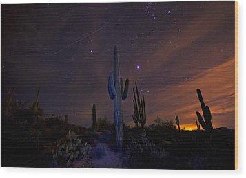 On A Starlit Night  Wood Print by Saija  Lehtonen