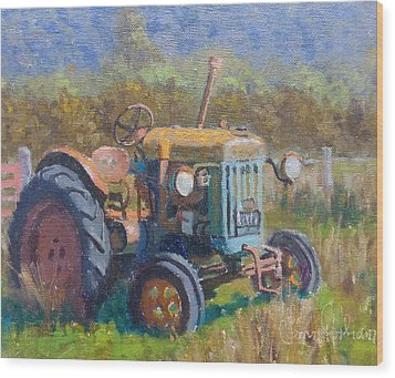 On A Westland Farm  Wood Print by Terry Perham