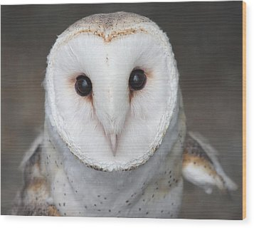 Wood Print featuring the photograph On Alert by Nathan Rupert