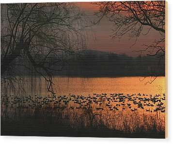 On Golden Pond Wood Print by Lori Deiter