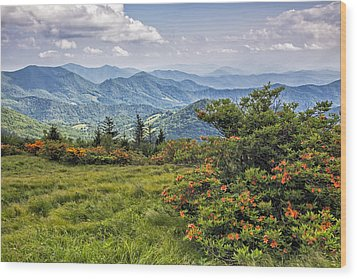 On Roan Mountain 10 Wood Print