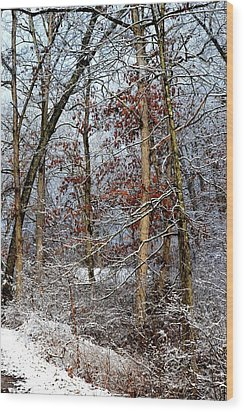 On Such A Winter's Day Wood Print