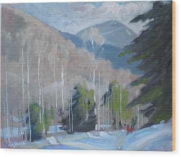 On The Ashuwillticook Rail Trail Wood Print by Len Stomski