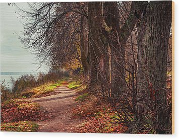On The Bank Of River Volga Wood Print by Jenny Rainbow