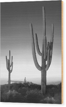 On The Border Wood Print by Mike McGlothlen