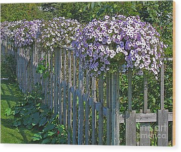 On The Fence Wood Print by Ann Horn
