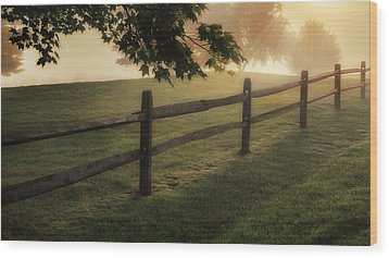 On The Fence Wood Print by Bill Wakeley