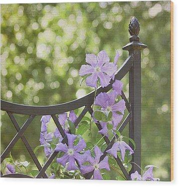On The Fence Wood Print by Kim Hojnacki