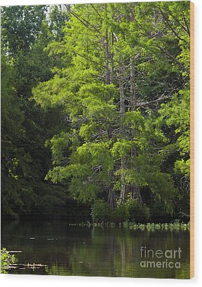 Wood Print featuring the photograph On The Lake Two by Ken Frischkorn