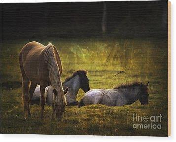 On The Meadow Wood Print by Angel  Tarantella