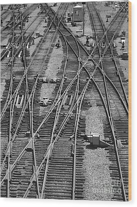 On The Right Track? Wood Print by ELDavis Photography
