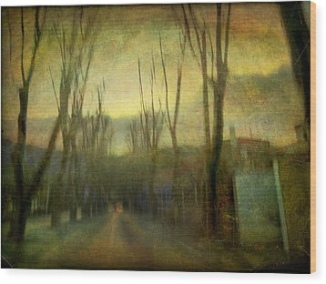 Wood Print featuring the photograph On The Road #13 by Alfredo Gonzalez