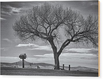 On The Road To Taos Wood Print