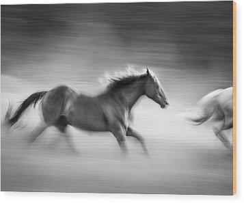 On The Run Wood Print by Dianne Arrigoni