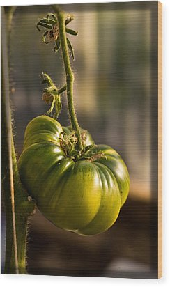 Wood Print featuring the photograph On The Vine by Liz  Alderdice