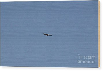 On The Wings Of A Eagle Wood Print by Daniel Henning