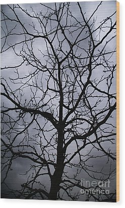 On Their Shoulders Held The Sky Wood Print by Linda Shafer