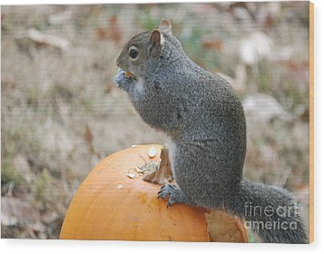 Wood Print featuring the photograph On Top Of The Pumpkin by Mark McReynolds