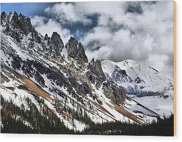 On Top Of The Rockies Wood Print by Rebecca Adams