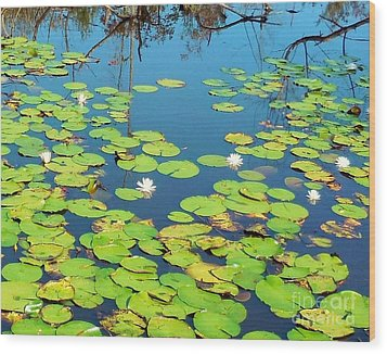 Once Upon A Lily Pad Wood Print by Eloise Schneider