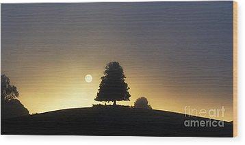 One Foggy Morning Wood Print by Tim Gainey