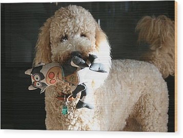 One Happy Labradoodle Wood Print by Horst Duesterwald