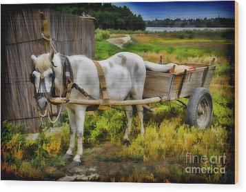 One Horse Wagon Wood Print