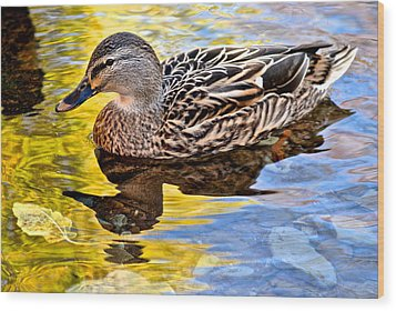 One Leaf Two Ducks Wood Print by Frozen in Time Fine Art Photography