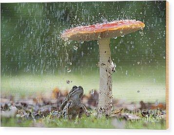 One Rainy Day Wood Print