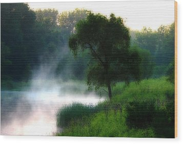 One Spring Morn Wood Print by Kimberleigh Ladd