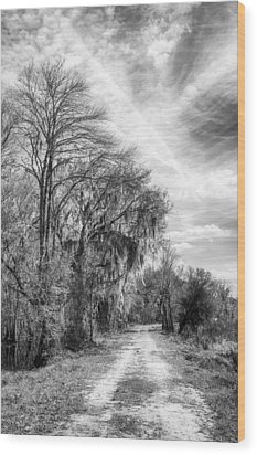 Wood Print featuring the photograph One The Levy by Howard Salmon