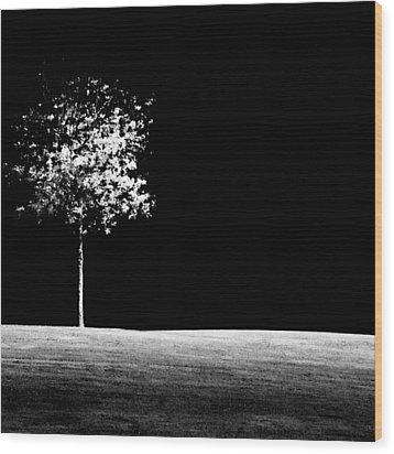 One Tree Hill Wood Print by Darryl Dalton