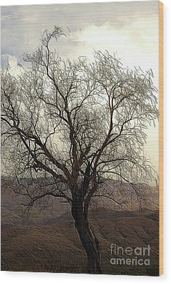 One Tree Wood Print by Kathleen Struckle