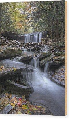 Oneida Falls Wood Print by Michael Donahue