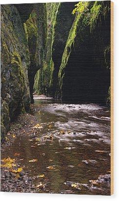 Onieata Gorge Wood Print by Jeff Swan