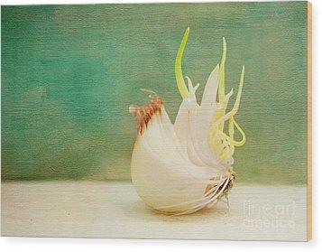 Onion Bird Wood Print by Kay Pickens