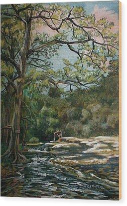 Onion Creek Tx Wood Print by Dan Terry